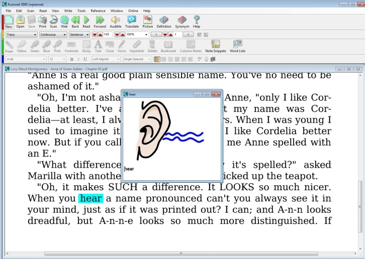 Now that the picture dictionary is powered by 11,000 Widgit symbols, it's an essential support for students who have trouble with homonyms.