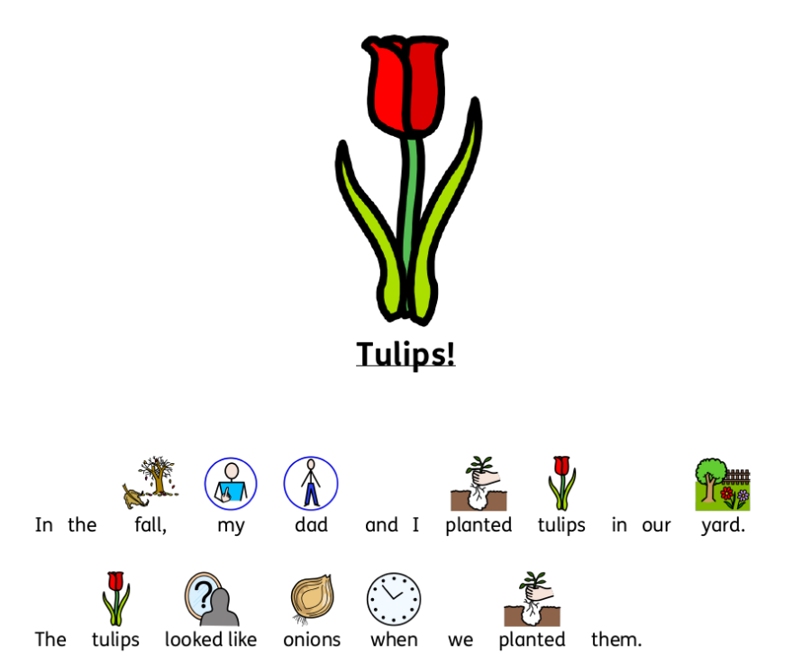 Free Tulip Symbolized Story and Word Search